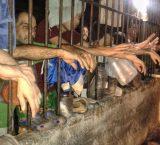 154 presos detenidos en Poliplaza esperan por traslados a cárceles
