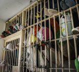 Nueva Esparta: Familiares de presos de CDP piden a funcionarios conciencia durante las requisas