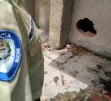 Asesinan a golpes a preso de la Policía municipal de Cumaná