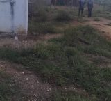 Nueva Esparta: Estiman que varios fugados del CDP de Pampatar se entreguen hoy en Juan Griego